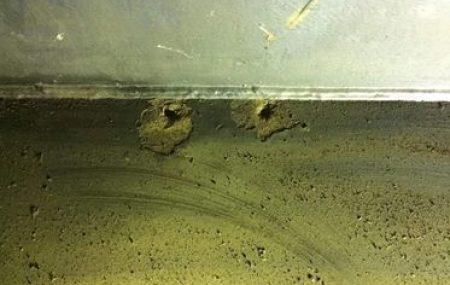 قام مختصي منسقية التفتيش والمتابعة بالكشف الداخلي و الخارجي لخزان زيت الثقيل رقم 59 بمستودع جنزور النفطي بعد أن تم إزالة بعض العوازل الحرارية وتجهيزه من الداخل لتحديد